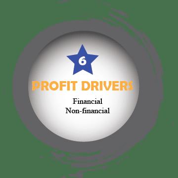 Profit Drivers