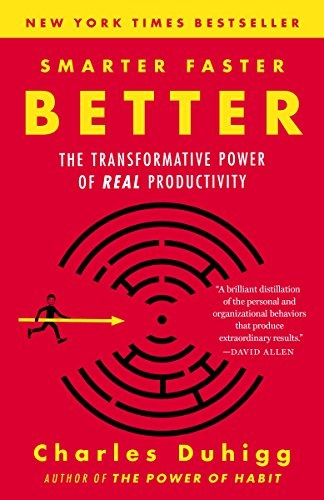 Smarter Faster Better: Goal Setting Sample & Productivity